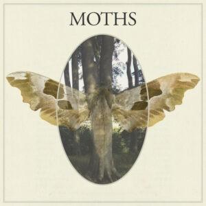 Moths - Μοths