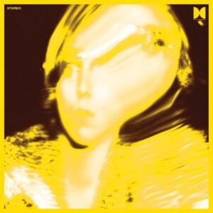 Ty Segall – Twins