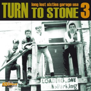 Various – Turn To Stone 3 (Long Lost Sixties Garage USA)